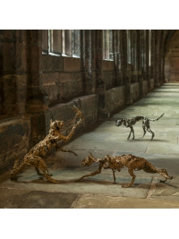 Stalking Cat, Glaring Cat & Cat Catching Bird by Deborah van der Beek