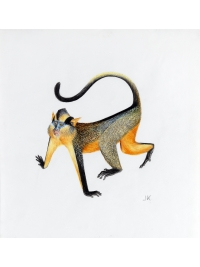 Mammals of Africa: Jonathan Kingdon