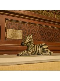 Zebra Foal by Anita Mandl