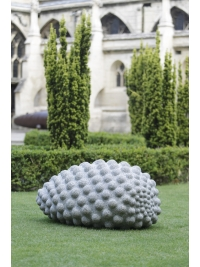 Little Seed by Peter Randall-Page