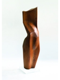 Elm Torso by Terence Coventry