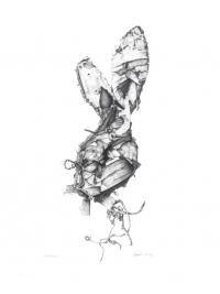 Rabbit, rabbit by Leanne Foyle