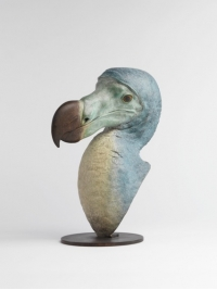 Dodo Head by Nick Bibby