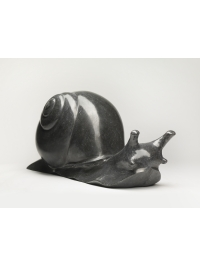 Snail by Michael Cooper