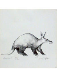 Aardvark by Jonathan Kingdon