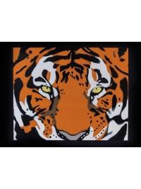 Tiger by Chris Dodd