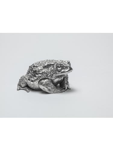 Toad II