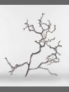 Apple Branch by Daniel Chadwick