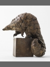 Ground Pangolin by Pangolin Designs