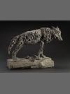 Wolf : Endangered Species by Deborah van der Beek