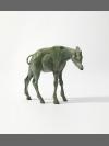 Okapi by Jonathan Kingdon