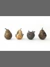 A History of the World in Four Fruits by Deborah van der Beek